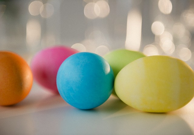 Colored Easter eggs, studio shot