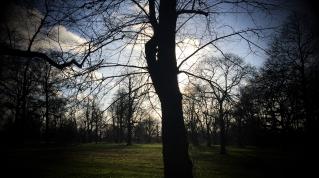 Kensington Gardens. © David-Kevin Bryant