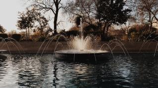Kensington Gardens, London. © David-Kevin Bryant